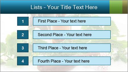 0000062334 PowerPoint Template - Slide 3
