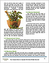 0000062334 Word Templates - Page 4
