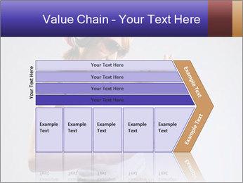 0000062336 PowerPoint Templates - Slide 27