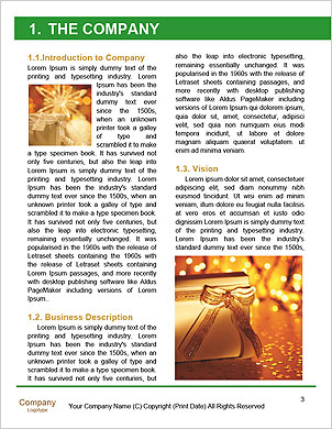 0000062340 Word Template - Page 3