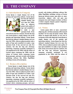 0000062346 Word Template - Page 3