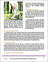 0000062346 Word Templates - Page 4