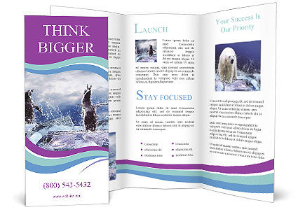 0000062350 Brochure Template