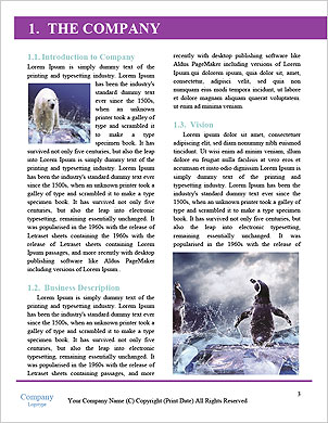 0000062350 Word Template - Page 3