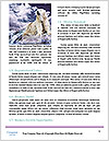 0000062350 Word Templates - Page 4