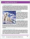 0000062350 Word Templates - Page 8