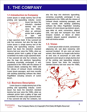 0000062355 Word Template - Page 3