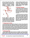 0000062355 Word Templates - Page 4