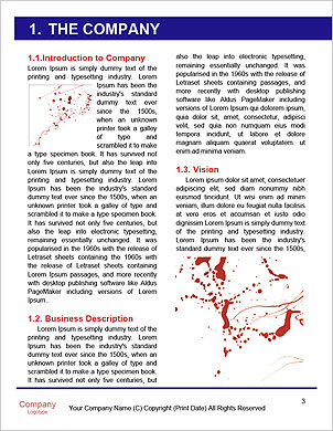 0000062357 Word Template - Page 3