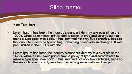 0000062374 PowerPoint Template - Slide 2