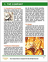 0000062375 Word Template - Page 3