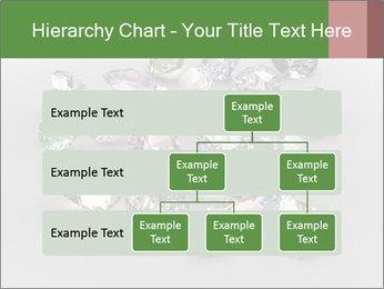 0000062382 PowerPoint Templates - Slide 67