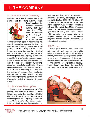 0000062387 Word Template - Page 3