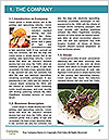 0000062390 Word Templates - Page 3