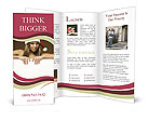 0000062392 Brochure Templates
