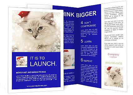 0000062396 Brochure Template