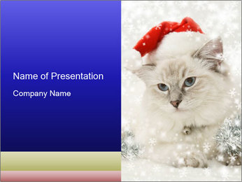 0000062396 PowerPoint Templates - Slide 1