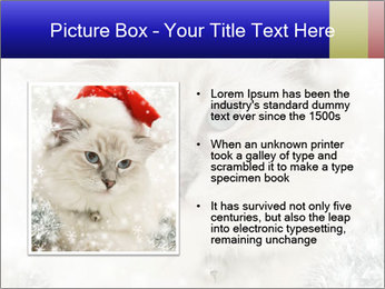 0000062396 PowerPoint Templates - Slide 13