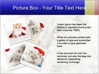 0000062396 PowerPoint Templates - Slide 23