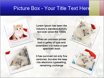 0000062396 PowerPoint Templates - Slide 24