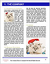 0000062396 Word Templates - Page 3