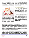 0000062396 Word Templates - Page 4