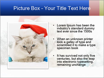 0000062397 PowerPoint Template - Slide 13
