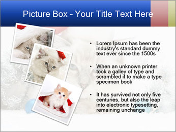 0000062397 PowerPoint Template - Slide 17