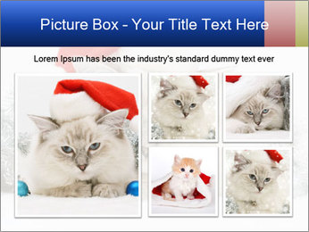 0000062397 PowerPoint Template - Slide 19