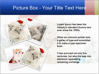 0000062397 PowerPoint Template - Slide 23