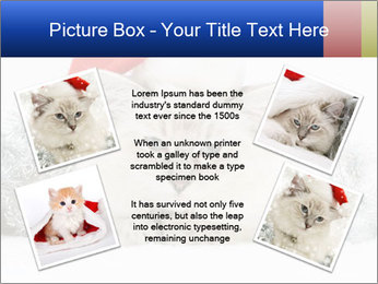 0000062397 PowerPoint Template - Slide 24