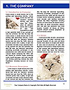 0000062397 Word Template - Page 3