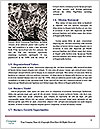 0000062399 Word Template - Page 4