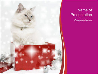 0000062410 PowerPoint Template - Slide 1