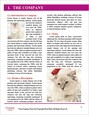 0000062410 Word Template - Page 3