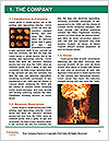 0000062412 Word Template - Page 3