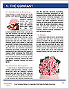 0000062418 Word Template - Page 3