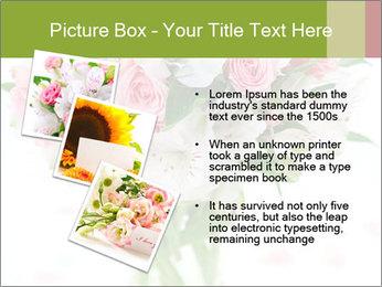 0000062419 PowerPoint Templates - Slide 17