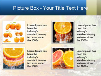 0000062420 PowerPoint Templates - Slide 14