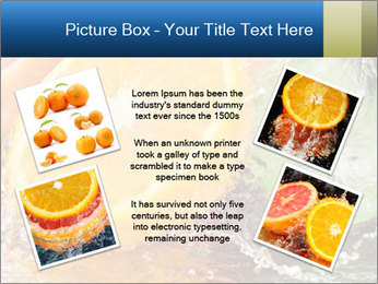0000062420 PowerPoint Templates - Slide 24