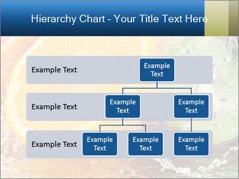 0000062420 PowerPoint Template - Slide 67