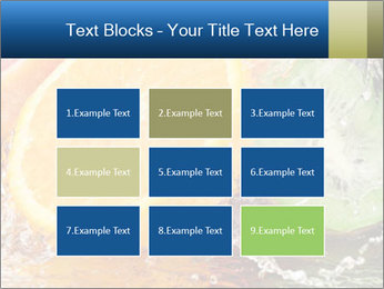 0000062420 PowerPoint Templates - Slide 68