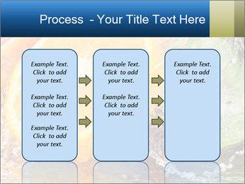 0000062420 PowerPoint Template - Slide 86