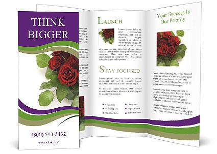 0000062421 Brochure Template
