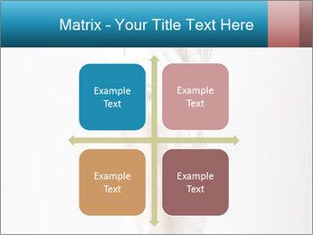 0000062428 PowerPoint Templates - Slide 37