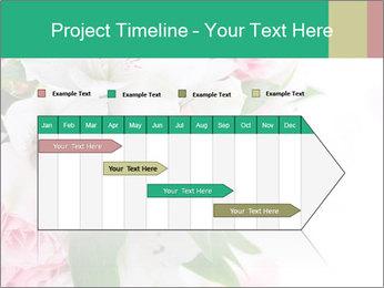 0000062429 PowerPoint Template - Slide 25