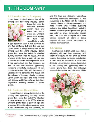 0000062429 Word Template - Page 3