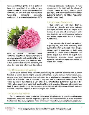 0000062429 Word Template - Page 4