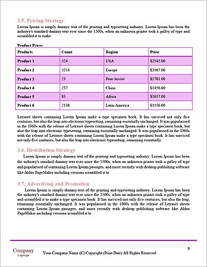 0000062434 Word Template - Page 9
