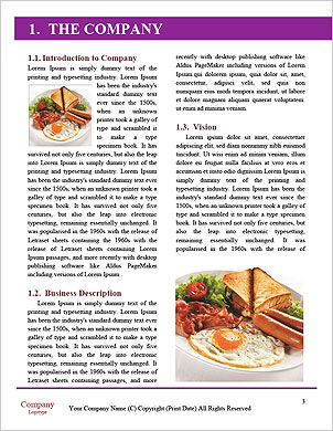 0000062437 Word Template - Page 3